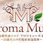 Aroma Muse  (アロマミューズ)谷九店